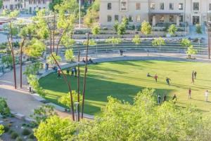 3. campus lawn